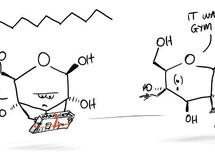 Molecular Christmas Gifts