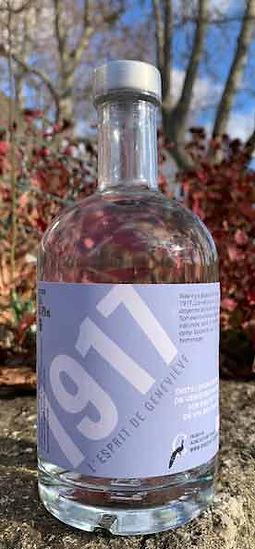 spiritueux__Gin__Chateau_coujan__1917__e