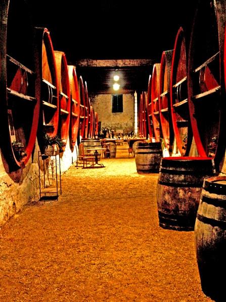 Chateau_coujan__dégustation 2.jpg
