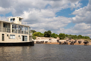 Chobe Princess River Safari 8.jpg