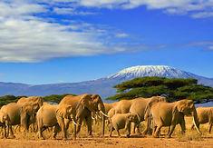 Tanzania-e1555938157355-2501x1406_edited
