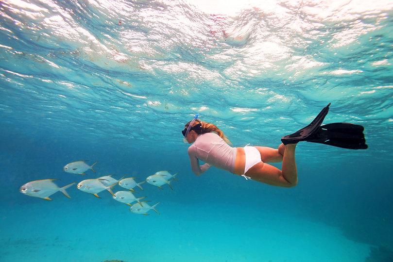 BlueSafari-alphonse-snorkelling-19-Antho