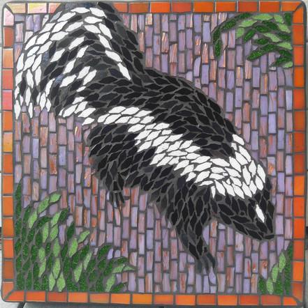 Stepping Stone skunk 02.jpg