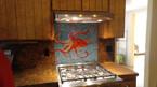 Backsplash Octopus 01.jpg