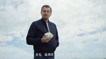 Leonardo DiCaprio All Birds