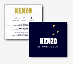 11 Kenzo.png