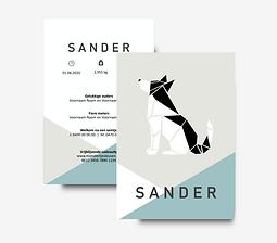 Sander.png