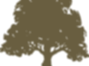 sycamore-logo-with-text-03-14-13-1-.png