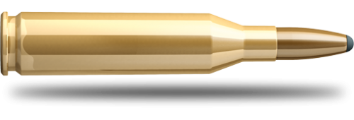 Bulk .243 WIN. SP - 100GRS