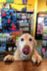 tongue puppy.jpeg