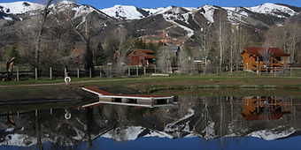 Dog-Park-Willow-Creek-1200x600.jpg