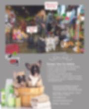 2 Barking Cat 9.25 x 11.jpg