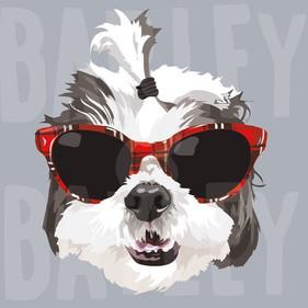 BARK CITY PRINTS ART YOUR PET (16).jpg