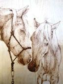 horses small.JPG
