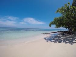 Ilha Zapatilla - Bocas del Toro