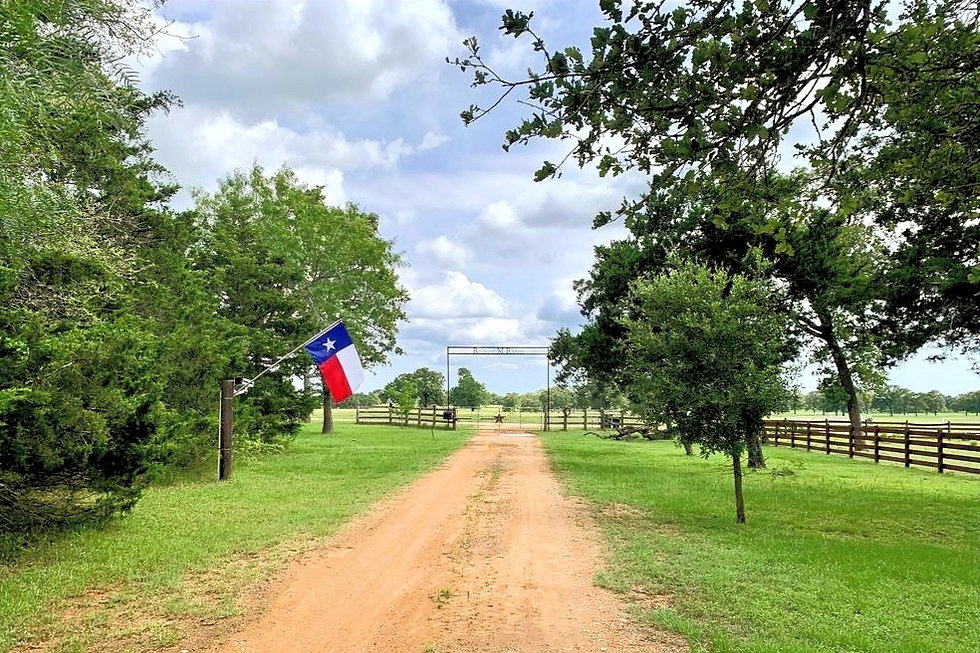 Rocking M Ranch Weddings Events and Lodging Smithville TX Texas Bastrop Venue