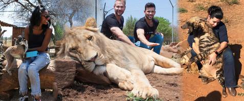 safari page predator park.jpg