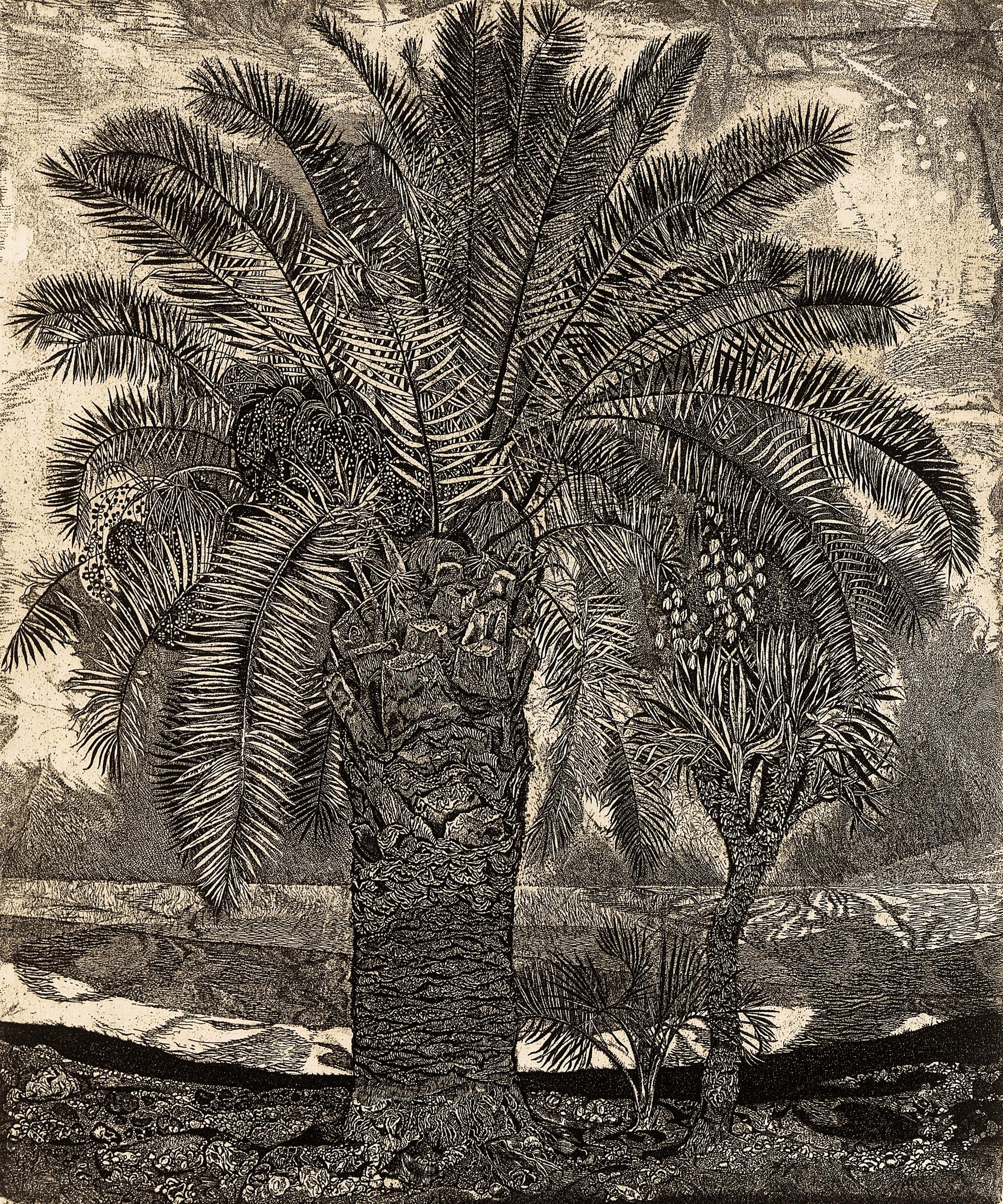 Palm-tree. Gagra