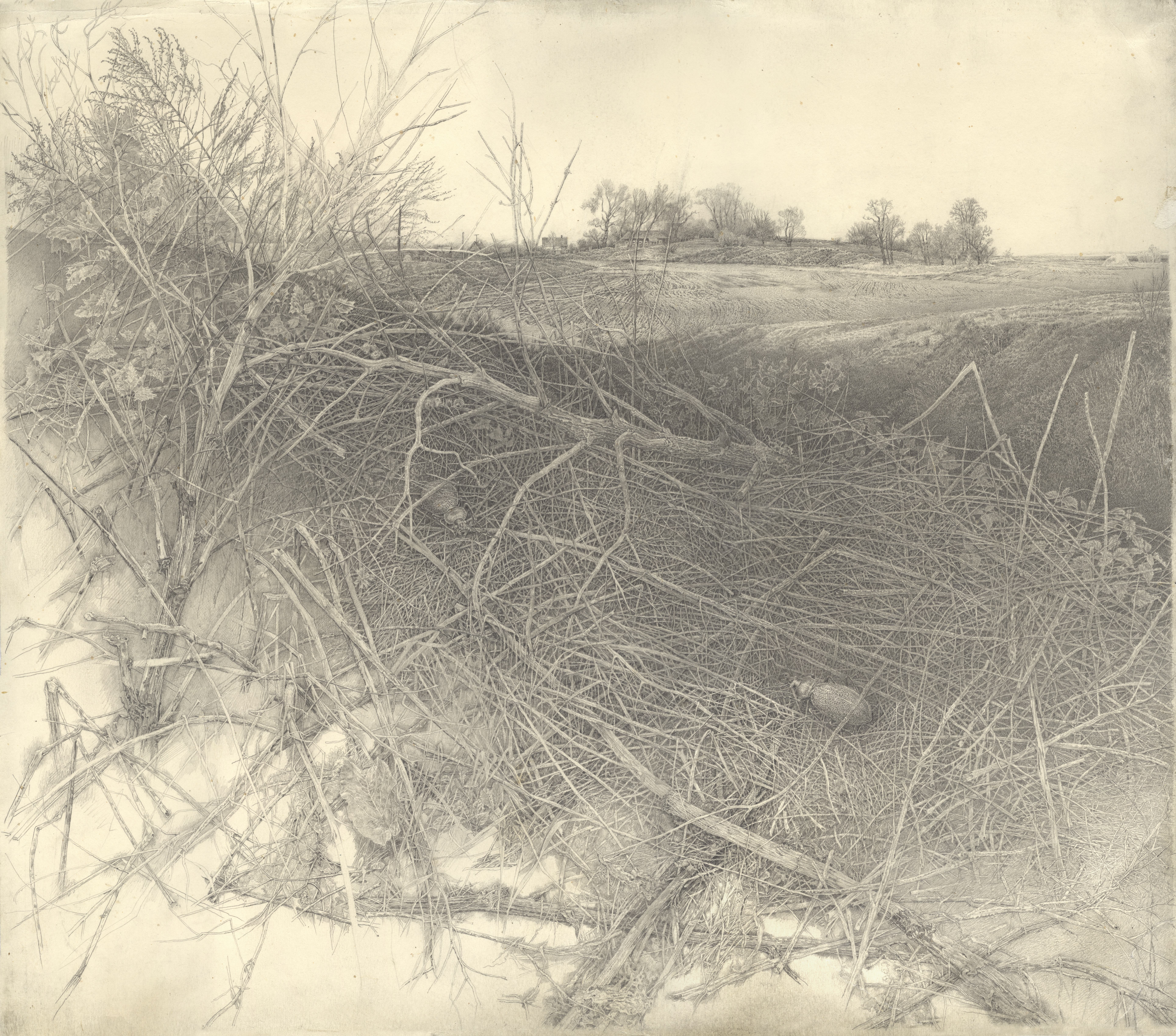 """Sketch of """"Spring View"""""""