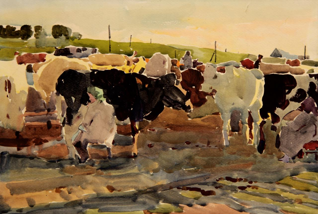 Milking Cows. Dobroe Village