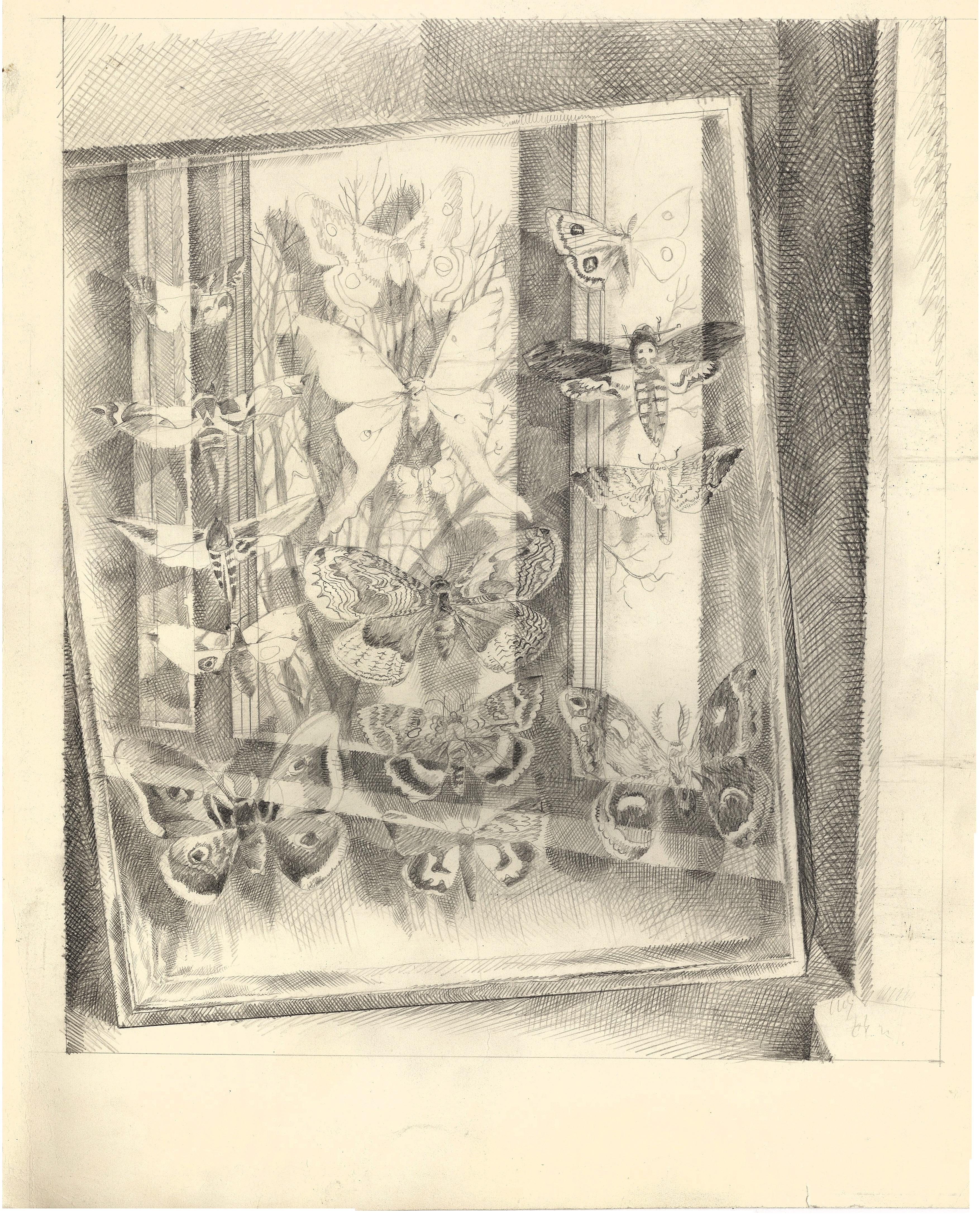 """Sketch of """"Butterflies"""""""