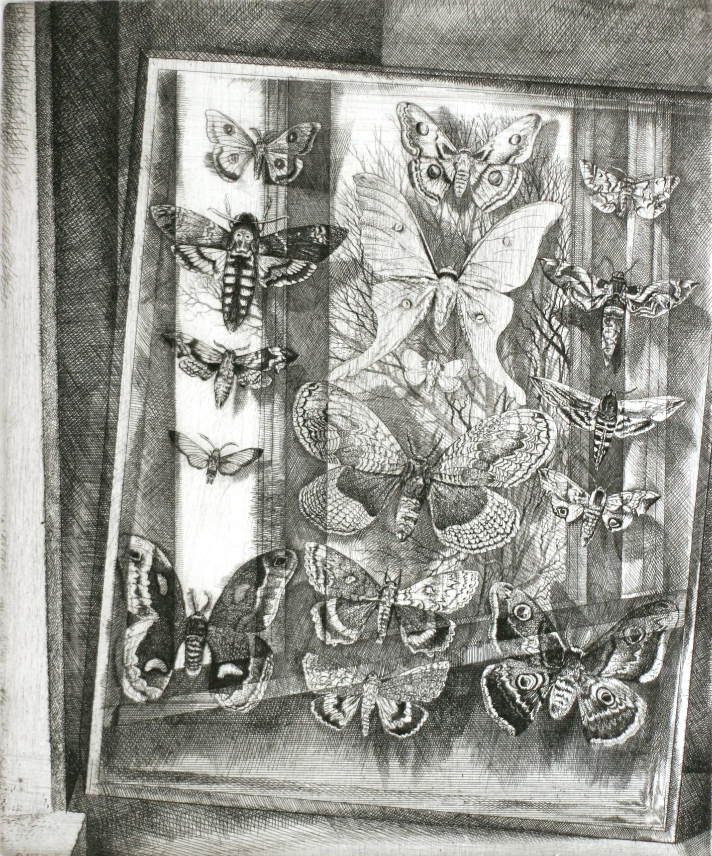 Batterflies