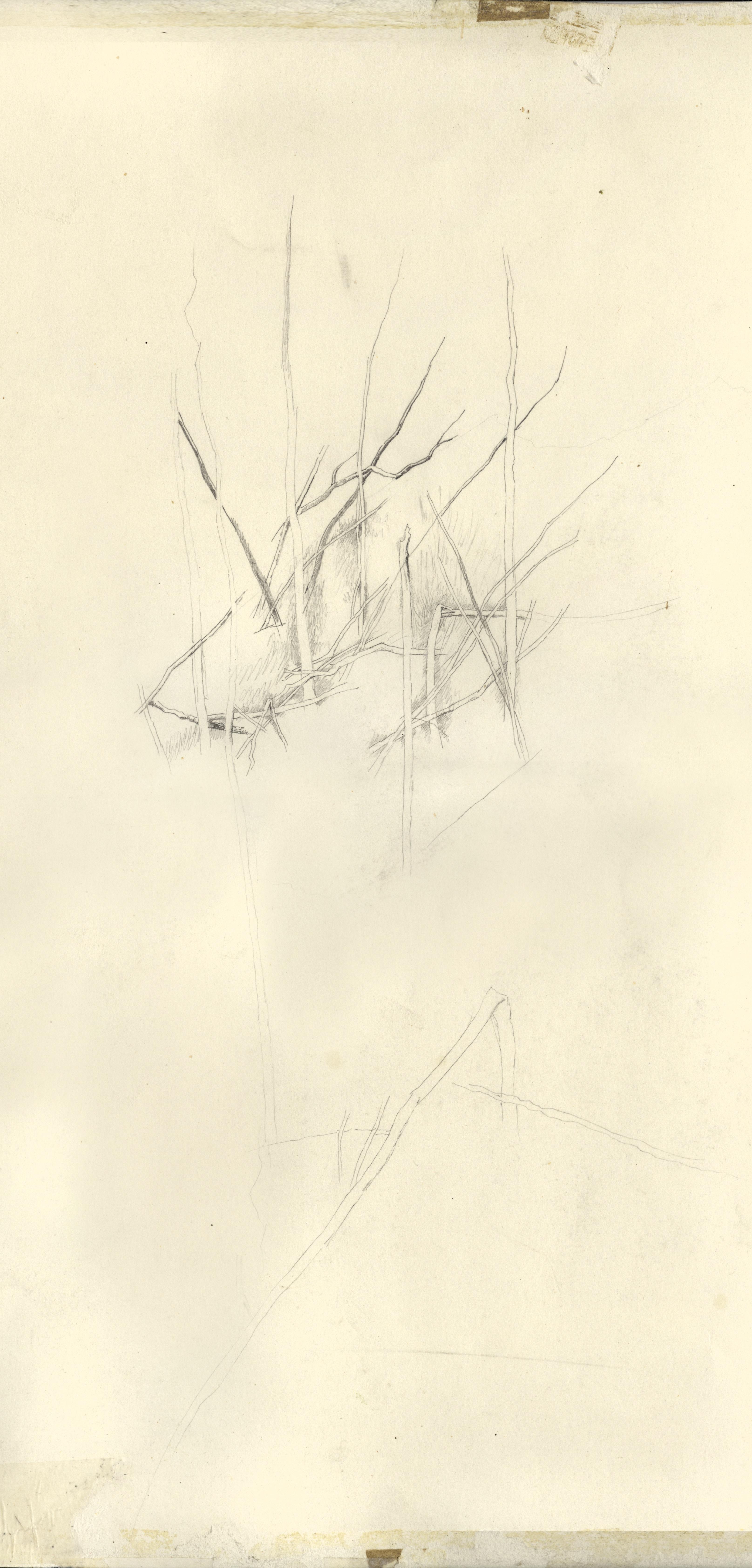 Весенний мотив (фрагмент)