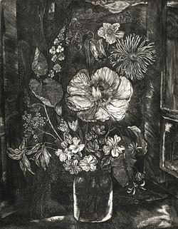 Горные цветы Абхазии