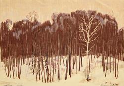 Landscape with Birch
