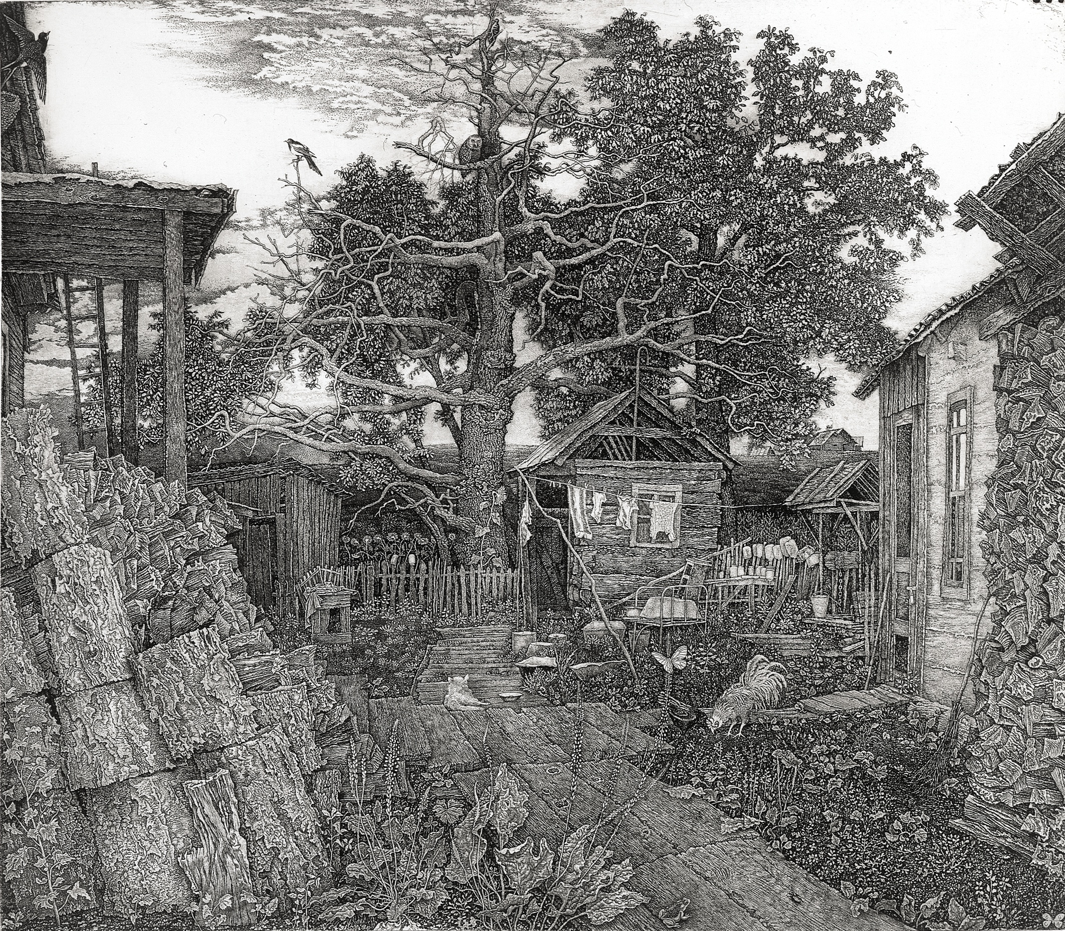Lady Frossia's Yard