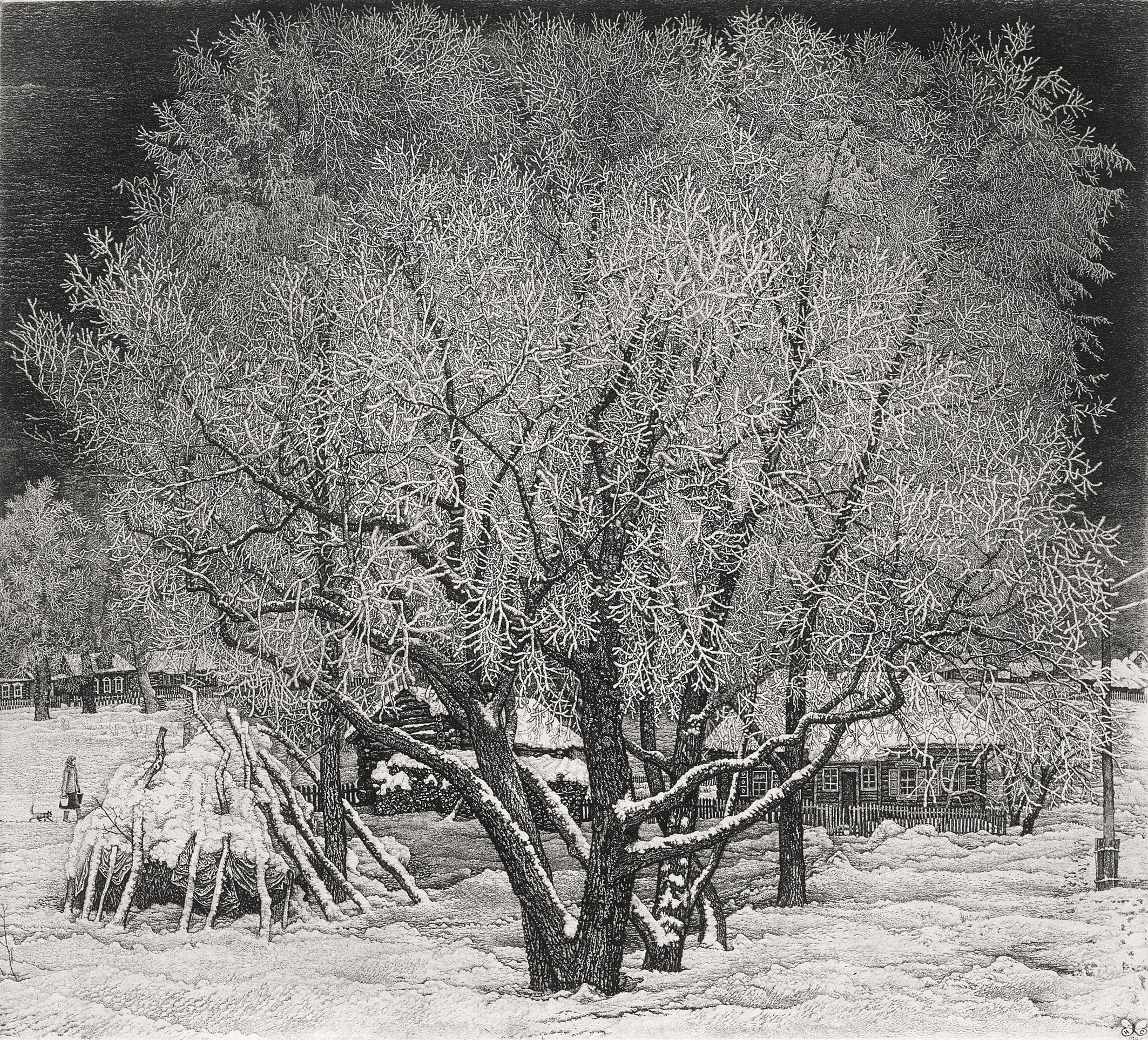 Hoarfrost. Moscow Environs