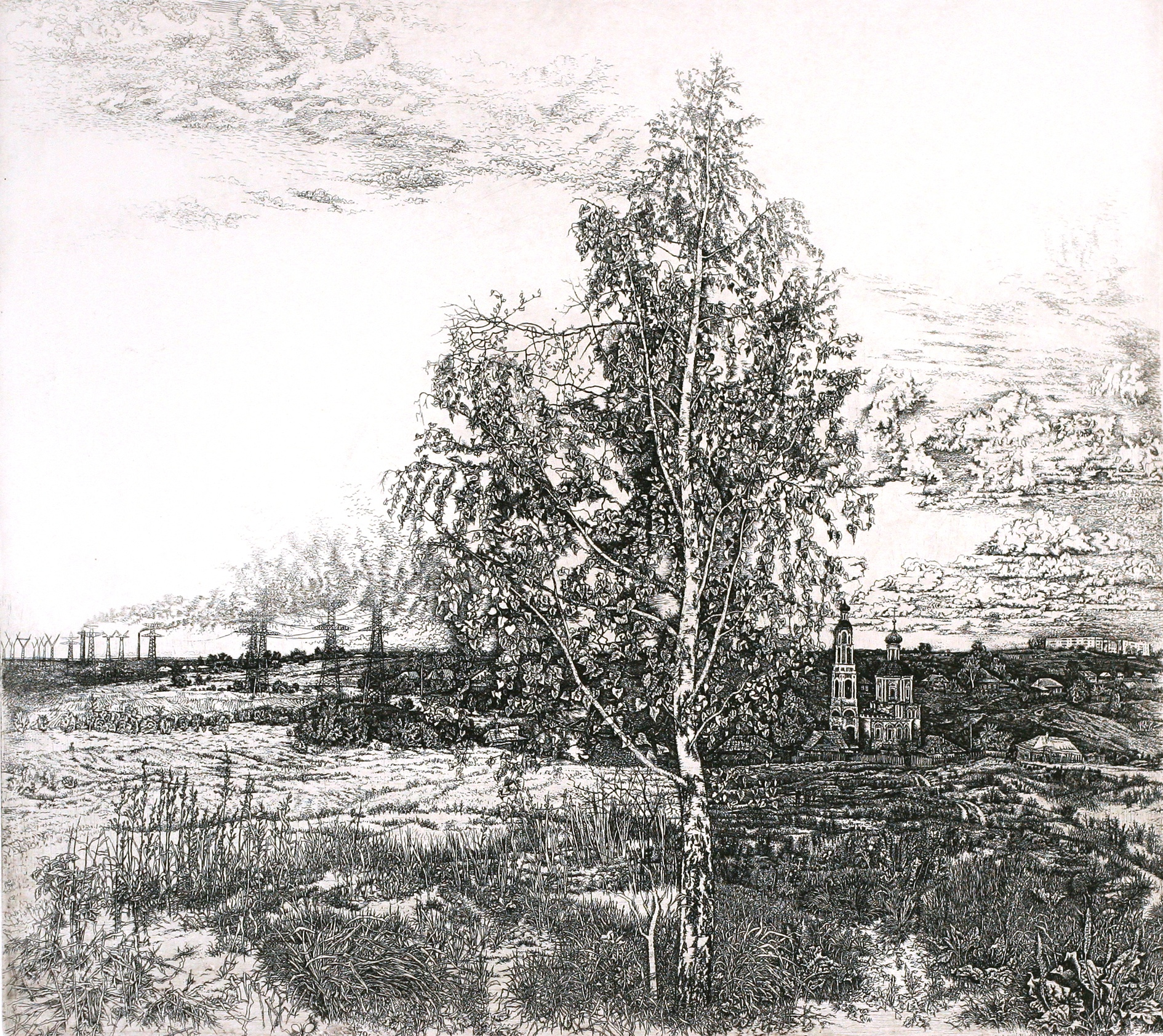 Birch in the Middle of the Field