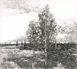 Во поле берёзонька