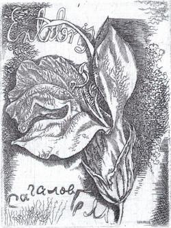 Экслибрис Сагалову