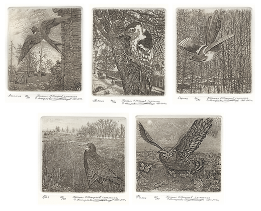 "A complete set of etchings ""Birds of Russia""(SOLD)"