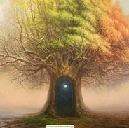 4 лунный день - Дерево познания д