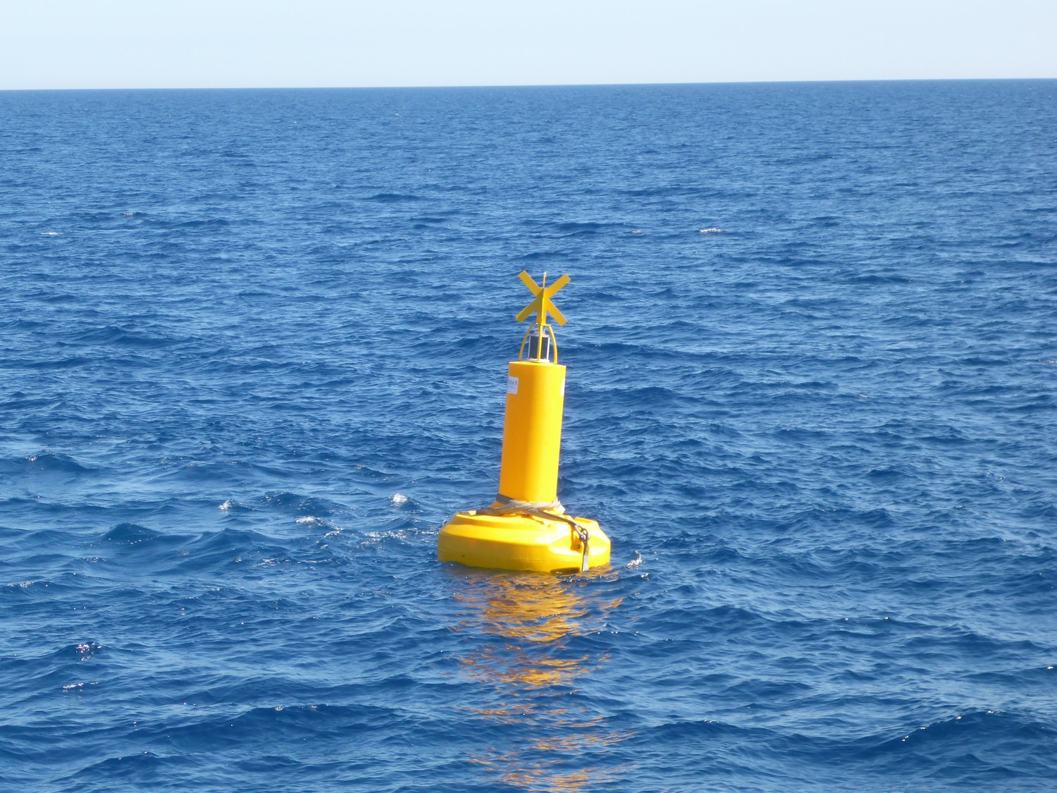 Cylindrical mast special mark buoy