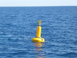 Cylindrical mast special mark buoy