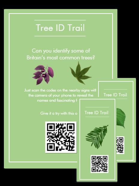The Tree ID Trail