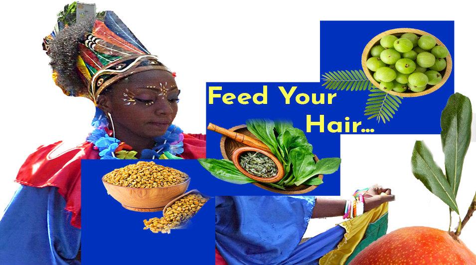 Banner Feed  your Hair.jpg
