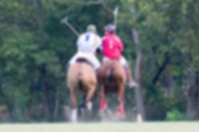 PonyUp Final 3-5301.jpg
