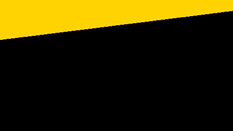Papadon Top - Yellow.png