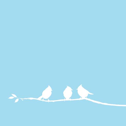 """Header Startseite BirdsMedia """"Designagentur"""""""