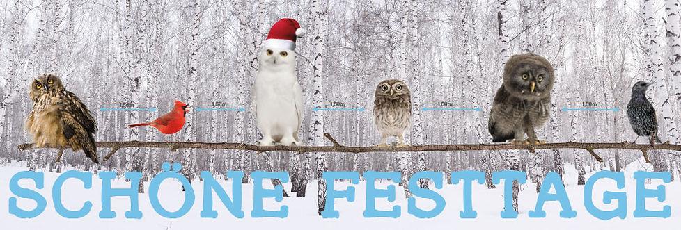Weihnachtskarte_2020.jpg