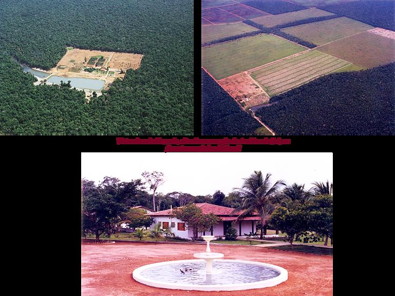 4 Fazenda.png