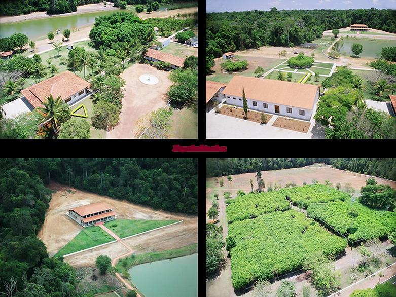 6 Fazenda.png