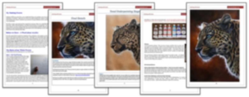 Leopard - Demonstration