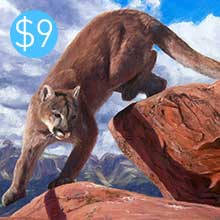 Cougar - Oils