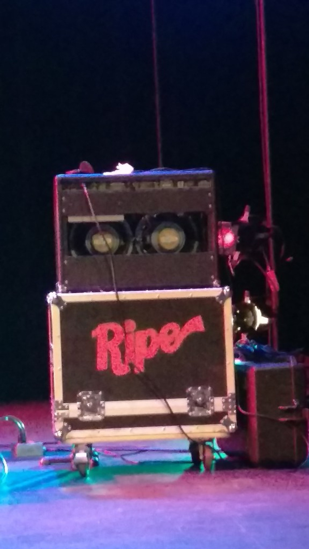 A picture of the band's sound trunk with their name Ripe on it.