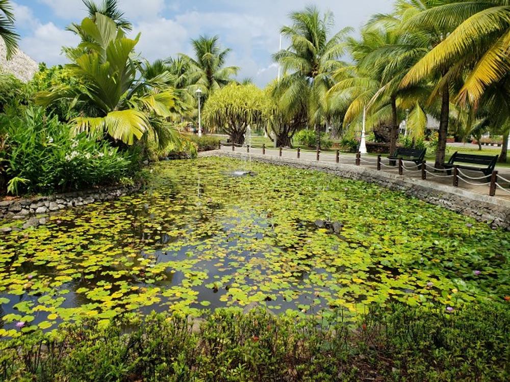 Pa'ofa'i Gardens in Papeete